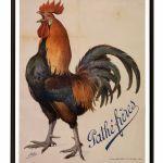 Coq_1914